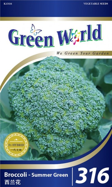 Green World Broccoli - Summer Green