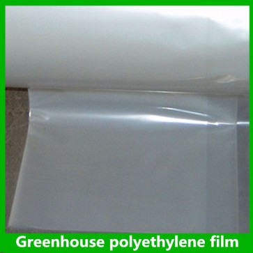 Green House UV Transparent Stabilized Film (24ftW x 49mL x 0.15mm)