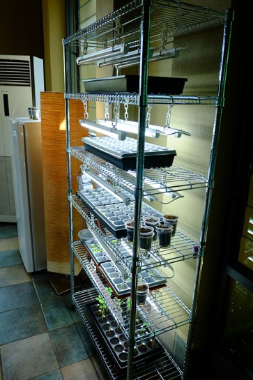 My Urban Growers Indoor Germination Rack Set