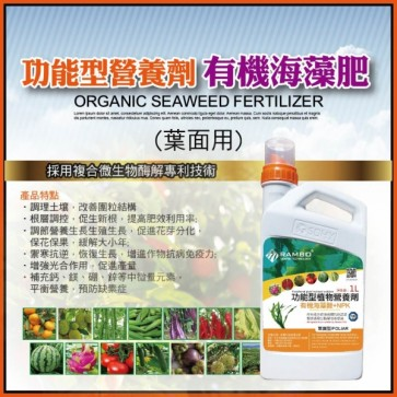 Luo Bang Rambo - Organic Seawood fertilizer (foliar)