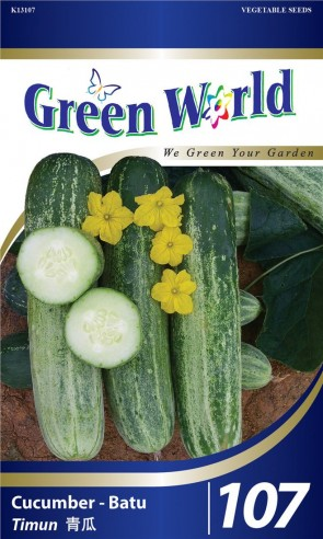 Green World Cucumber - Batu