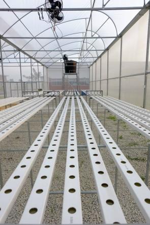 My Urban Growers Hydroponics NFT gutter 2x4 (5ft/10ft)