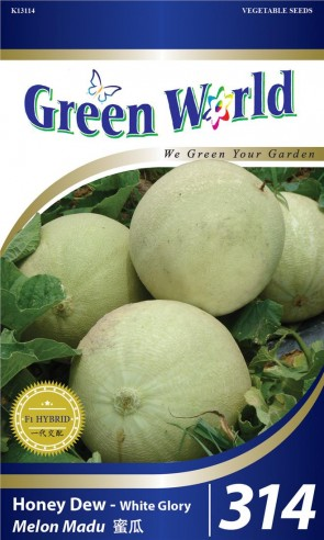 Green World Honey Dew - White Glory