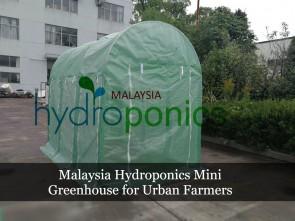 Malaysia Hydroponics Mini Greenhouse for Urban Farmers / Rumah Pelindung Hujan (RPH)