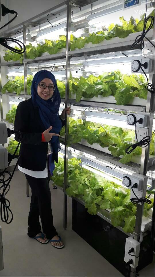 TPM indoor hydroponics